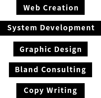 WebCreation System Development Graphic Design Bland Consulting Copy Writing